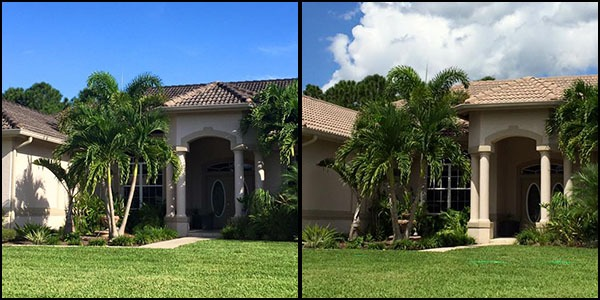 residential before & after roof cleaning