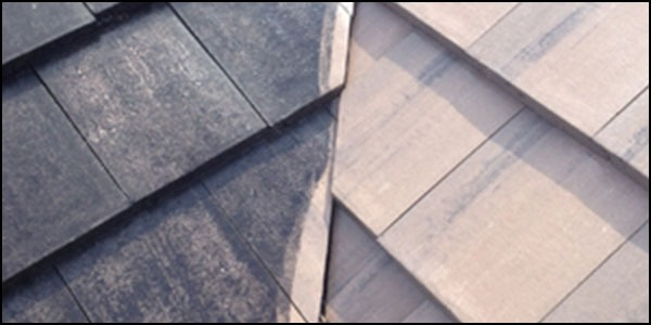 wooden shingle roof cleaning